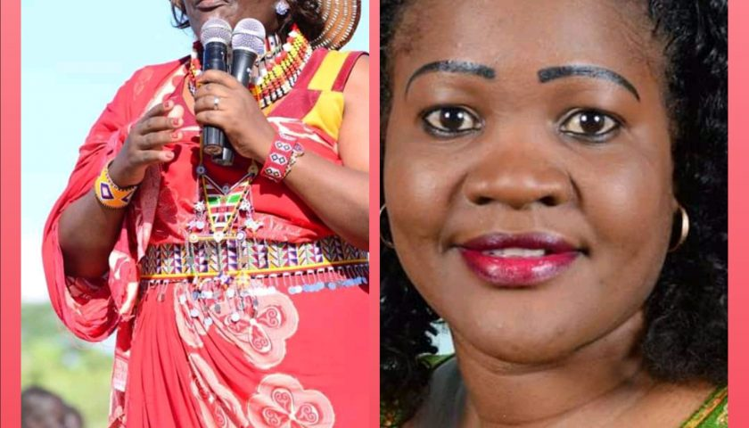 Female Nominated Senators Exchange Blows After Ledama Ole Kina Won Committee Election. 1