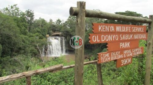 The 5 Best Family Fun Places to Check Out in Thika, Kenya