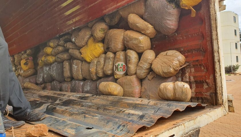 DCI Arrests 1 Woman and 4 men in Isiolo- Wajir highway Seized Transporting Bhang worth 20M to Nairobi.