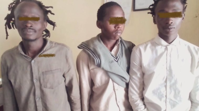 DCI Officers Nab Man Who Cultivated Bhang On 1/4 Hectare Within His Compound, Nakuru County.